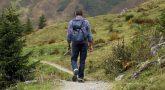 טיולים מאורגנים בארץ למבוגרים